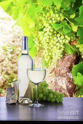 Pop Art Rights Managed Images - White Wine in Vineyard Royalty-Free Image by Anastasy Yarmolovich
