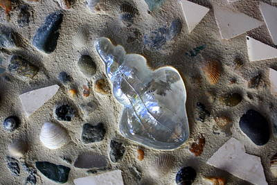 Northeast Mixed Media - Glass Shell Closeup by Anne Babineau