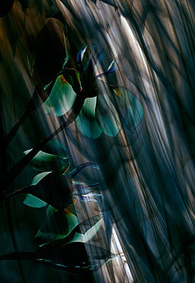 Scanography Photograph - Glass Transparency by Marsha Tudor