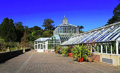 Photograph - Glasshouse Entrance by Nareeta Martin