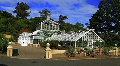 Photograph - Glasshouse Looking Towards Cactus House by Nareeta Martin