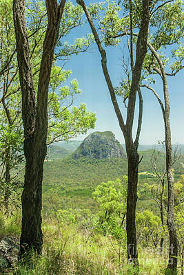 Photograph - Glasshouse Mountains by Werner Padarin