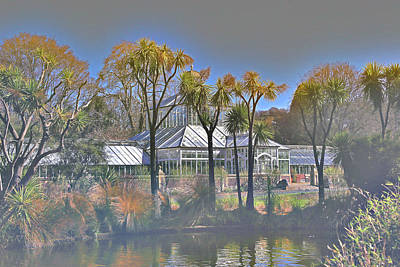 Photograph - Glasshouse With Cabbage Trees by Nareeta Martin