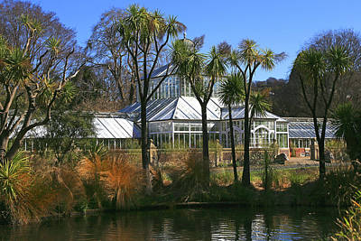 Photograph - Glasshouse,cabbage Trees And Pond. by Nareeta Martin