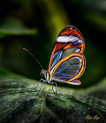 Photograph - Glasswing Butterfly Iridescence  by Rikk Flohr