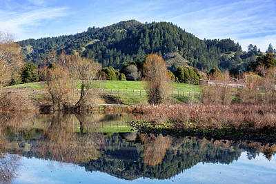 Photograph - Glassy Mountain Reflections by Kathleen Bishop