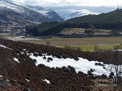 Photograph - Glen Clunie Near Braemar by Phil Banks