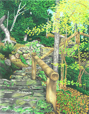 Drawing - Glen Ellis Falls by Troy Levesque