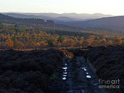 Photograph - Glenlivet - Autumn Unfolds by Phil Banks