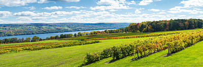 Seneca Lake Photograph - Glenora Vineyard, Seneca Lake, Finger by Panoramic Images