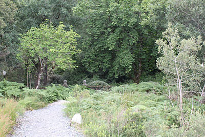 Photograph - Glenveagh Castle Gardens 4309 by John Moyer