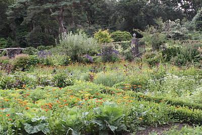 Photograph - Glenveagh Castle Gardens 4338 by John Moyer