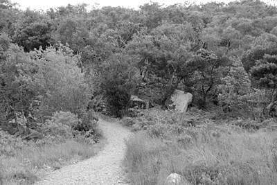 Photograph - Glenveagh National Park 4307 by John Moyer