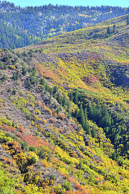Photograph - Glenwood Canyon Fall Colors by Ray Mathis
