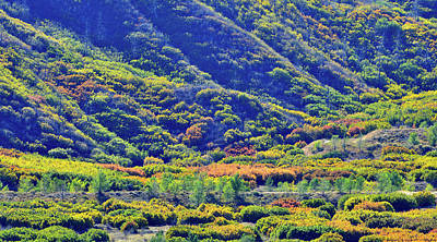 Photograph - Glenwood Springs Fall Colors On Display by Ray Mathis
