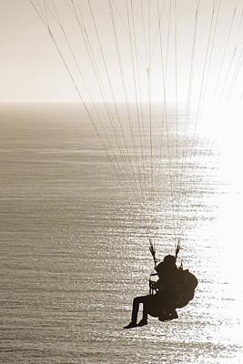 Photograph - Gliding by Susan McMenamin