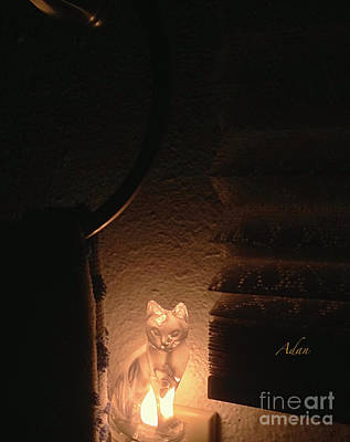 Photograph - Glimpses - Night Cat by Felipe Adan Lerma