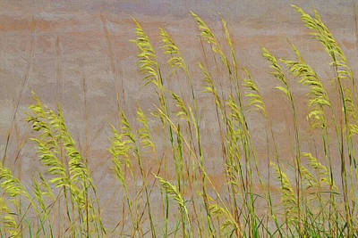 Textured Photograph - Glimpses Of The Beach Serenity by Marcia Colelli