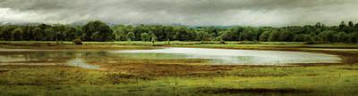 Photograph - Glistening Wetland by Don Schwartz