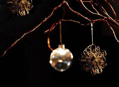 Photograph - Glitter by Jacqueline M Lewis