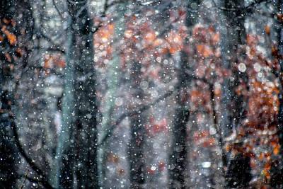 Photograph - Glitterfall 2 by Carlee Ojeda