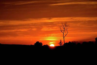 Photograph - Gloaming by Tracy Rice Frame Of Mind