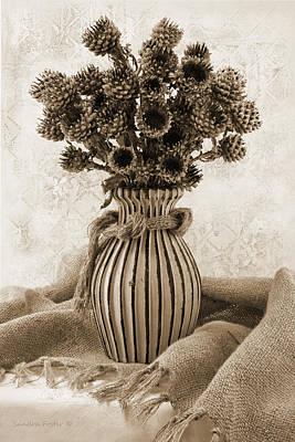 Cornflower Photograph - Globe Cornflower Seed Heads by Sandra Foster