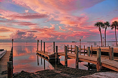 Photograph - Glorious By H H Photography Of Florida  by HH Photography of Florida