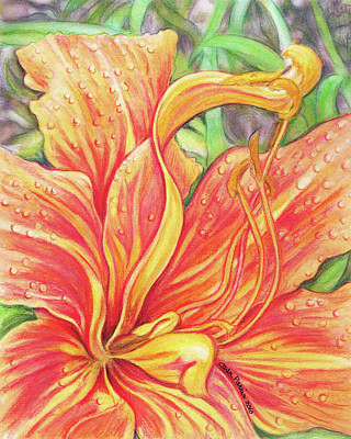 Photograph - Glorious Daylily by Carla Parris