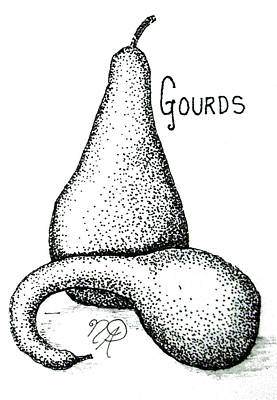 Drawing - Glorious Gourds by Nicole Angell