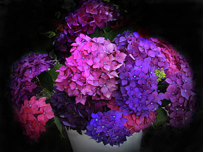 Photograph - Glorious Hydrangeas by Nareeta Martin
