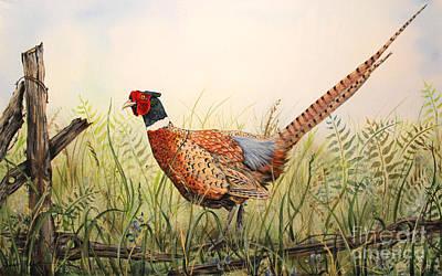 Glorious Pheasant-1 Original