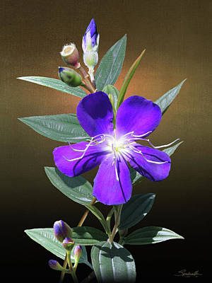 Digital Art - Glory Bush by IM Spadecaller