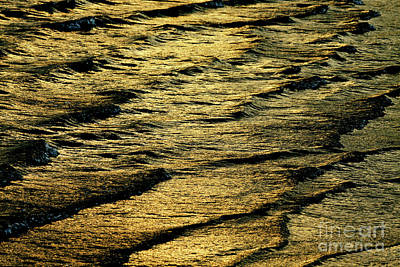 Photograph - Glory Of The Waves Fine Art Print by Carol F Austin