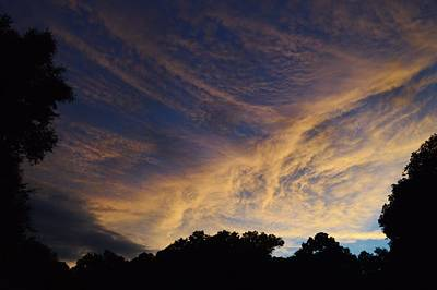Photograph - Glow At Sunset by Warren Thompson