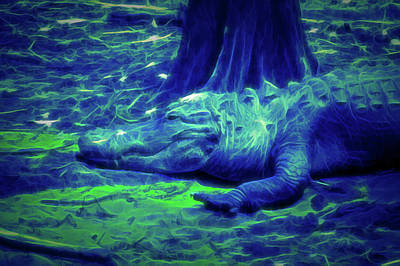 Photograph - Glow In The Dark Alligator by Aimee L Maher Photography and Art Visit ALMGallerydotcom