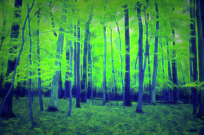 Photograph - Glow In The Dark Golden Woods by Aimee L Maher Photography and Art Visit ALMGallerydotcom