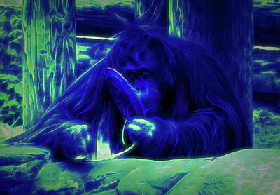 Photograph - Glow In The Dark Orangutan 2 by Aimee L Maher Photography and Art Visit ALMGallerydotcom