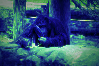 Photograph - Glow In The Dark Orangutan by Aimee L Maher Photography and Art Visit ALMGallerydotcom