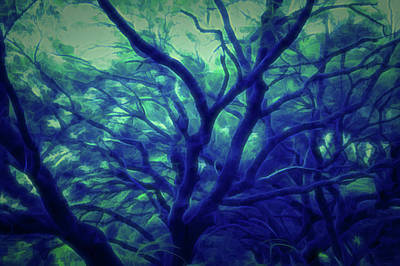 Photograph - Glow In The Dark Reaching Out by Aimee L Maher Photography and Art Visit ALMGallerydotcom