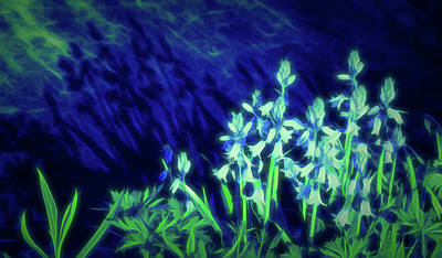 Photograph - Glow In The Dark Shadows by Aimee L Maher Photography and Art Visit ALMGallerydotcom