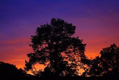 Photograph - Glow by Kathryn Meyer