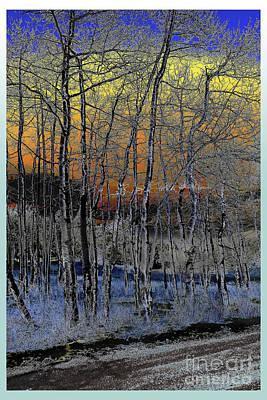 Digital Art - Glowing Aspens At Dusk by Deborah Nakano