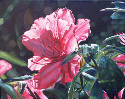 Painting - Glowing Azalea by Christopher Reid