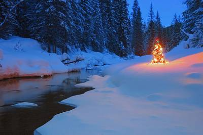 Glowing Christmas Tree By Mountain Art Print by Carson Ganci
