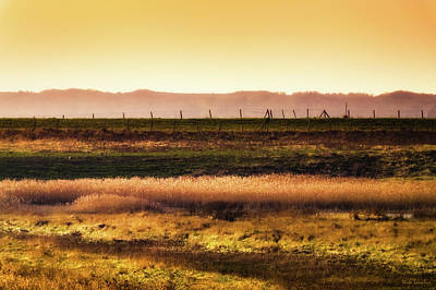 Photograph - Glowing Fields by Wim Lanclus