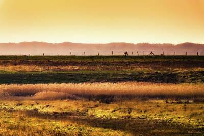 Photograph - Glowing Fields by Wim Lanclus