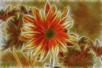 Glowing Flower Art Print
