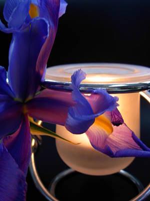 Photograph - Glowing Iris by Amanda Vouglas