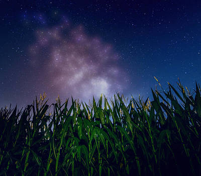 Photograph - Glowing Milky Way Over Corn Field by Dan Sproul